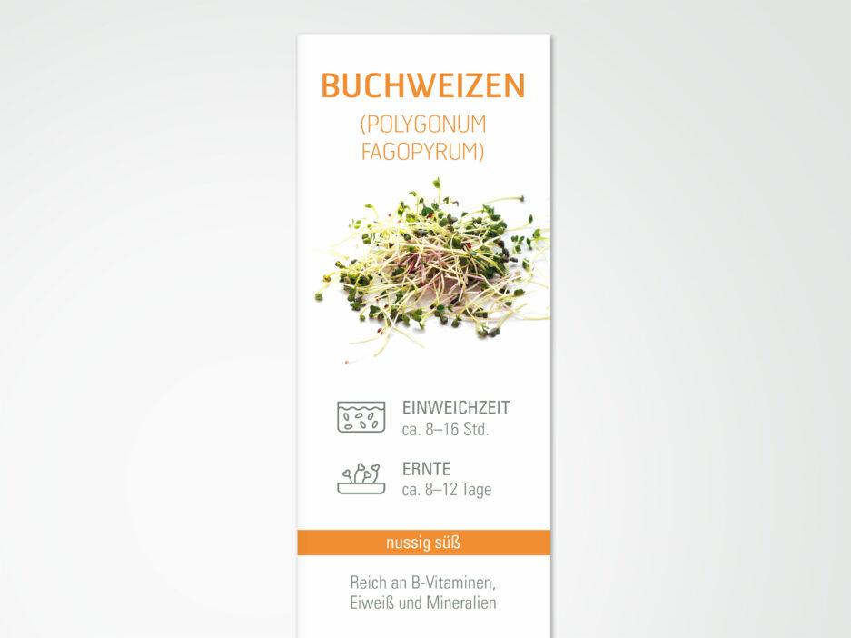 CHS Samen Buchweizen